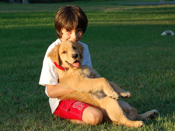 boy-with-a-dog-1309619.jpg