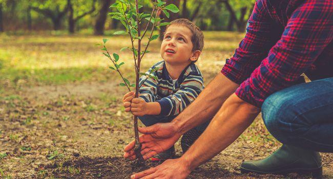 Seis benefícios que a natureza traz aospequenos