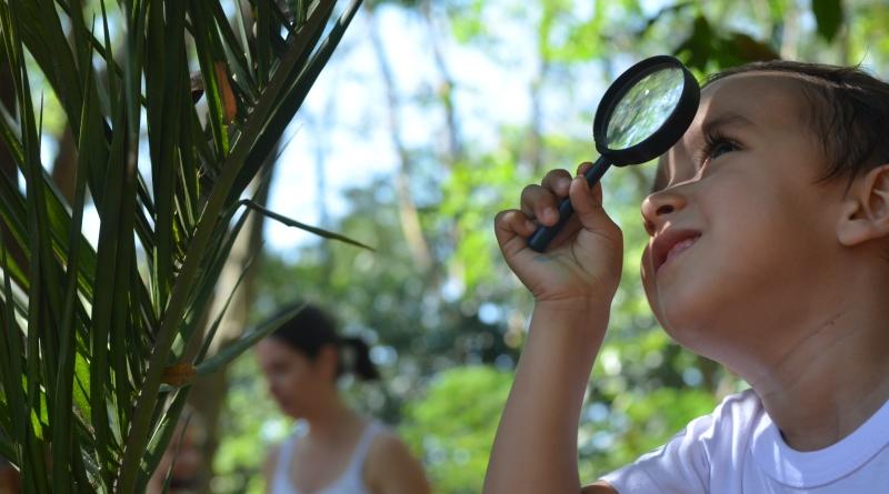 Você dá liberdade à criança para explorar o mundo fora de casa e daescola?